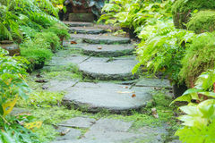 Stone walkway Royalty Free Stock Photos