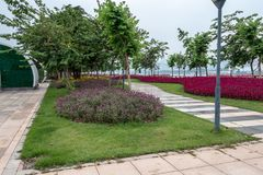 Stone walkways in the city park. Green lawn, blue sky. Red flowers on the lawn. Green bushes of trees.n stock photo
