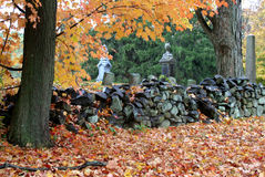 Stone Wall. And Tree in Autumn Royalty Free Stock Photo