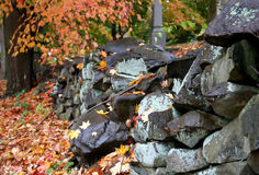 Stone Wall. And Tree in Autumn stock images