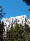 Stone wall. Cliffs from Gorski kotar, mountain region of Croatia Royalty Free Stock Photos