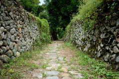 Stone wall. A wall made of stone or rock Royalty Free Stock Photos