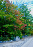 Stone wall along a forested wilderness on an autumn day. Old stone wall along an unpaved road in a forest wilderness with autumn leaves turning red and a blue Stock Photography