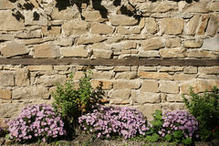 Stone wall. In the ancient Bulgarian town of Sozopol Royalty Free Stock Photos
