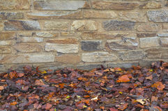 A stone wall with autumn leaves Royalty Free Stock Images