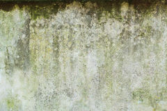 Stone wall background Stock Image