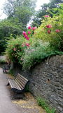 Stone wall with bench and flowers Stock Image