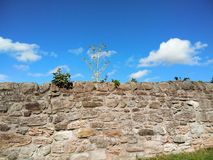 Stone wall and blue sky. Stone wall with some plants on top with blue sky on sunny day Stock Photo
