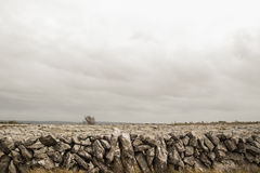 Stone wall in Clare Royalty Free Stock Photo