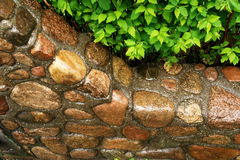 Stone wall close-up Royalty Free Stock Images