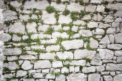 Stone wall covered moss and plants texture background Stock Images