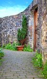 Wooden Door, Stone Wall, Walk way. A stone wall with a wooden door along an alley in Totnes U.K Stock Photography