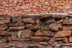 Stone wall and dry leaves Stock Images