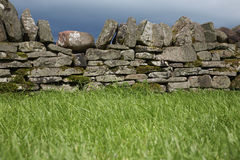 Stone wall by field Stock Images