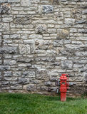 Stone Wall with Fire Hydrant Royalty Free Stock Photos