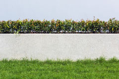 Stone wall and flora with grass in Garden Decoration design for Stock Photography