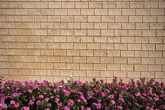 Stone wall and flowers Stock Images