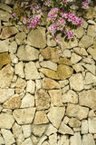 Stone wall with flowers Stock Photo