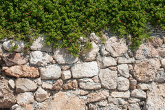 Stone wall with flowers Stock Photography