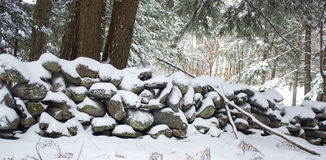 Stone Wall in Forest Covered in Snow Royalty Free Stock Images