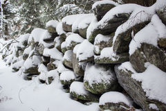 Stone Wall in Forest Covered in Snow Stock Images