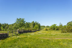 Stone wall with a gate Stock Photography