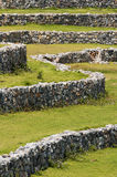 Stone wall and  grass Royalty Free Stock Photography