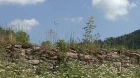 Stone wall stock video footage