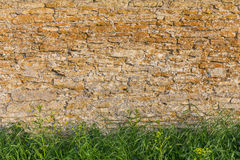 Stone wall with grass Royalty Free Stock Photography