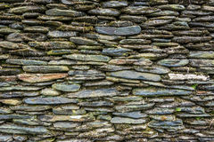 Stone wall with green moss Royalty Free Stock Photo