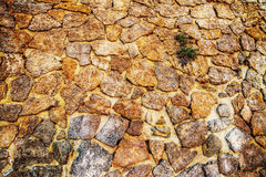 Stone wall in hdr Stock Photography