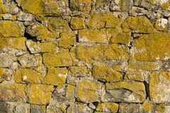 Stone wall with lichen Royalty Free Stock Photos