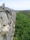 Stone Wall, The Lizard, Cornwall UK Royalty Free Stock Images