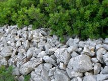Stone wall in mediterranean vegetation Stock Image