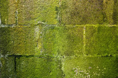 Stone wall moss covered Royalty Free Stock Image
