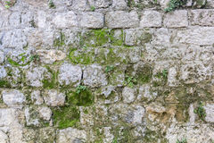 Stone wall with moss Stock Photo