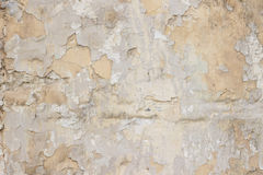 Stone wall with a multilayered old tumbling whitewash texture Royalty Free Stock Image