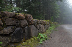 Stone Wall Near Trees Royalty Free Stock Image