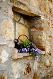 Stone wall niche with flowers. Wall niche with basket of flowers could be from any European old city wall. This location is Katakolo Greece. Basket is filled royalty free stock photos
