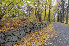 Stone wall in the park Stock Photo