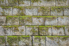 Stone wall pattern with green moss background and texture Royalty Free Stock Photography