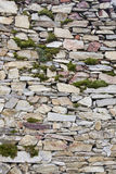 Stone wall with plants, texture Royalty Free Stock Image