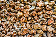 Stone wall with a porous surface Stock Photography