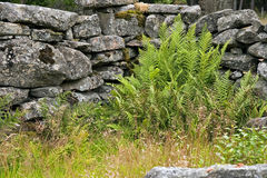 Stone wall remains Royalty Free Stock Photos