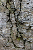 Stone wall of rock with cracks Royalty Free Stock Photos