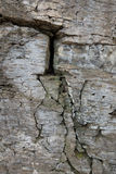 Stone wall of rock with cracks Stock Photos