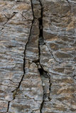 Stone wall of rock with cracks Stock Photo