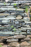 Stone wall from rough stone Stock Image