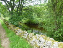 Stone Wall Running Alongside Stream, Kielder Fores Royalty Free Stock Photography