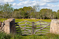 Stone wall with rustic gate Stock Photo